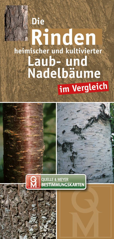 Rinden_Laub-Nadelbäume_5x10.jpg